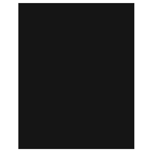 Dronninglund Slot Logo